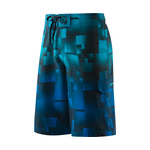 Speedo Cubist Collage Boardshort Male