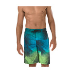 Speedo Prism Blend E-Board Short Male