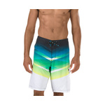 Speedo Crosscut Engineered Boardshort Male
