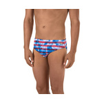 Speedo Brief CHAMPS AND STRIPES