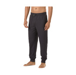 Speedo Male Jogger Pants