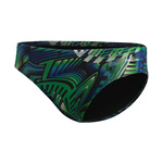 Dolfin Brief GENESIS