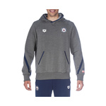 Arena Official USA Swimming National Team Hoody