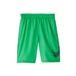 Nike Boys' Mash Up Lap 8in Volley Short
