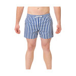 Dolfin Classics Stripe Swim Trunk
