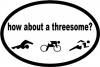 BaySix Triathlon Threesome Magnet