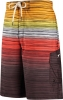 Speedo Blended Stripe E-Board Male