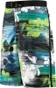 Speedo Windblast Floral E-Board Short Male