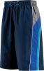 Speedo Sidewinder Volley Short Male