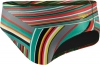 Speedo Rainbow Stripe Brief Male