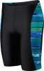 Speedo Deep Color Stroke Jammer Male