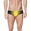 Nike Fade Sting Poly Blend Performance Brief Male