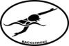 BaySix Swimmer Backstroke Car Magnet