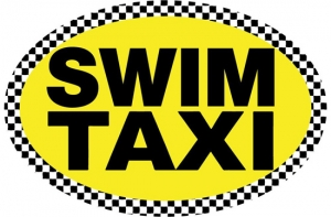 BaySix Swim Taxi Car Magnet