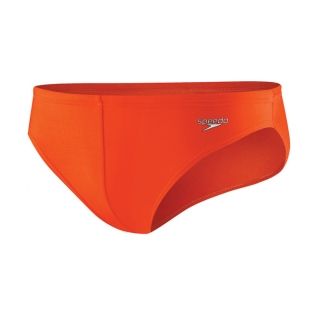 Speedo Men's  Solar 1in Brief
